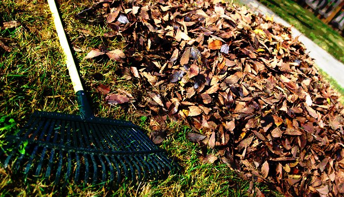 Important Tips To Prepare Your Yard For Winter