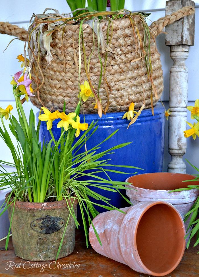 DIY Spring Planter Ideas