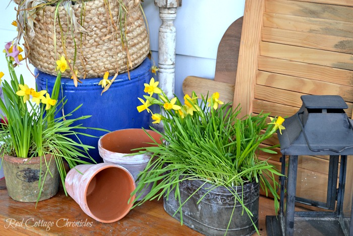 DIY Spring Planter Centrepiece