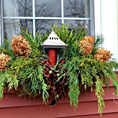 Foraged Christmas Window Boxes