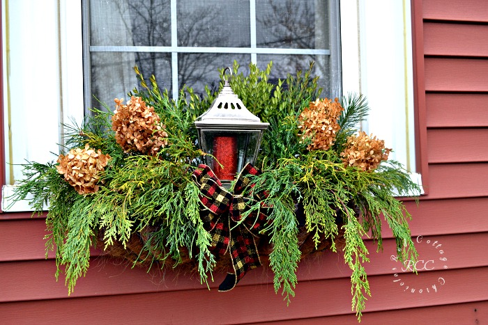 Foraged Christmas window boxes