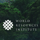 Beyond carbon financing: Briefing sheet from World Resources Institute