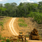 Can REDD save the Amazon?