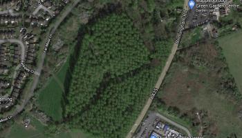 Mappleborough Woods Site