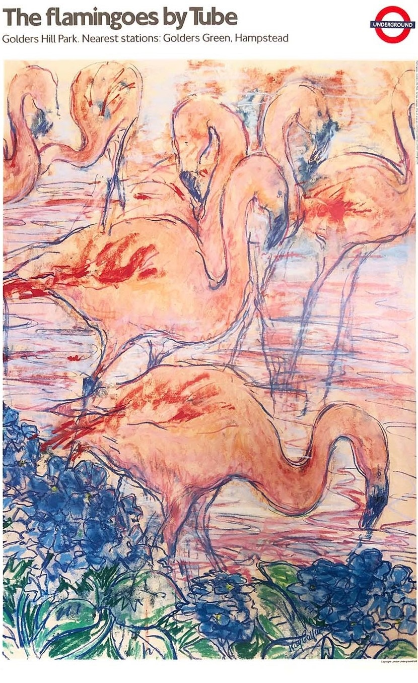 flamingoes by tube red summer