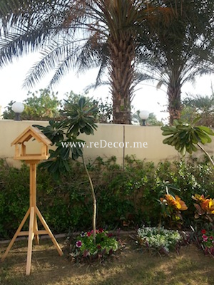 garden with flowers and birds  Dubai springs