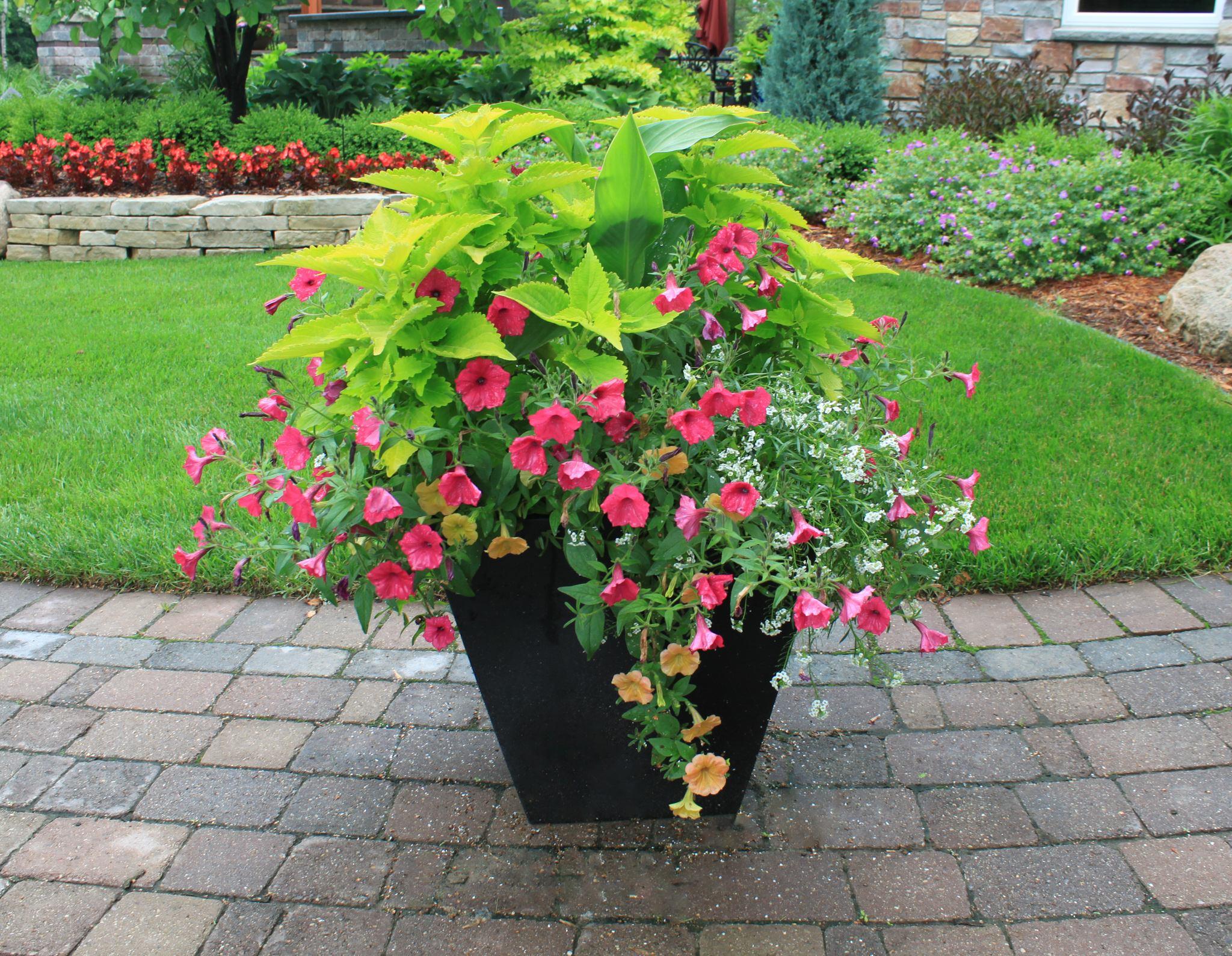 Container Gardening | Reder Landscaping - Landscape Design ... on Gardening  id=74823