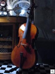 Cellospeaker4