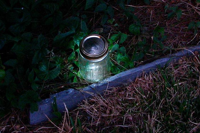 DIY LED Garden Lights – Recession friendly garden aesthetics