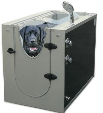 Canine Shower Stall – A doggy beauty salon