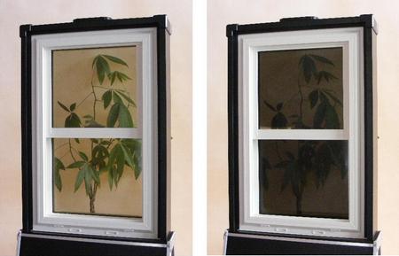 Raven Window 2