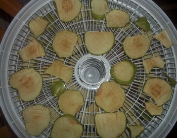 NESCO SnackMaster Express Food Dehydrator – make your own snacks at home