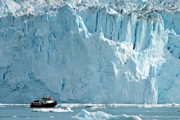 Iceberg Harvesting – from scams to innovation