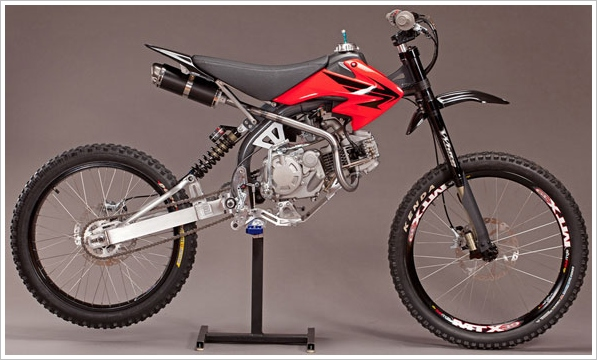 Motoped – the DIY cross between a mountain bike and a moped