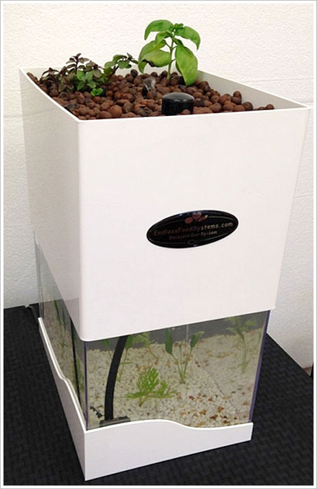TableTop Aquaponics – grow your own food the healthy sustainable way