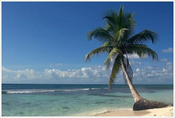 beachvideo