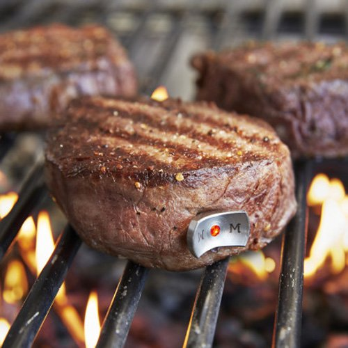 TECPOINT Sur La Table SteakChamp Thermometer – take the guesswork out of cooking your steaks