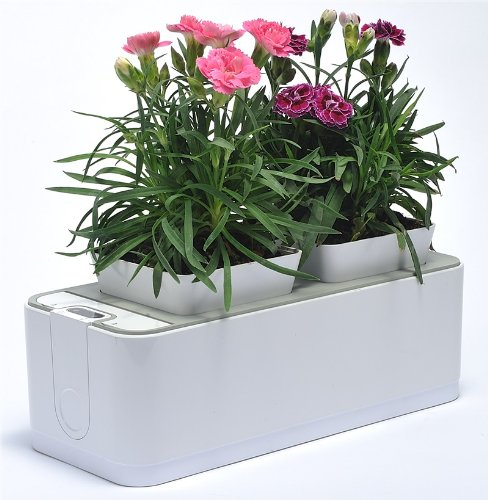 ZeroSoil Mini Indoor Garden – it waters itself so you don't have to