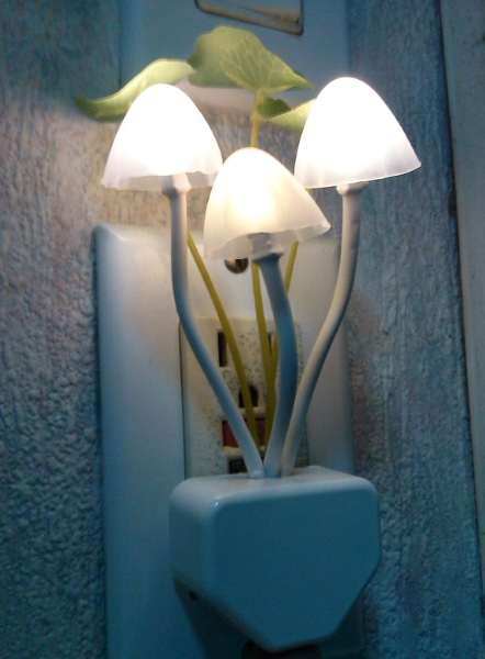 Color Changing Mushroom Night light on