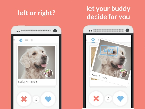 Tindog – a dating app just for your dog [FREEWARE]
