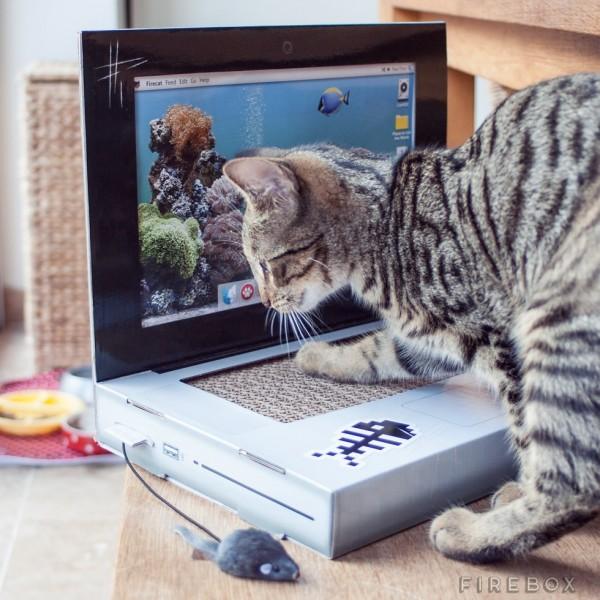Cat Scratch Laptop in use