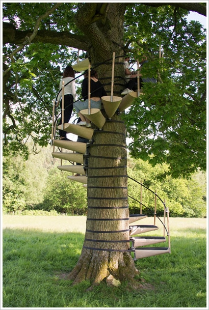 CanopyStair – now anyone can spend time up in the trees without turning monkey