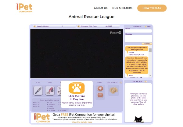 iPet Companion – give a shelter cat some attention