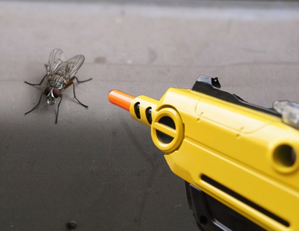 Bug-A-Salt 2.0 Fly Shooter – a new way to deal with a common pest
