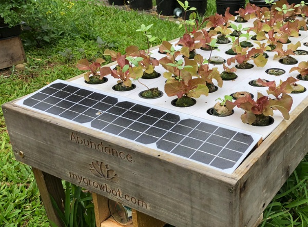 Growbot – this coffee table grows food