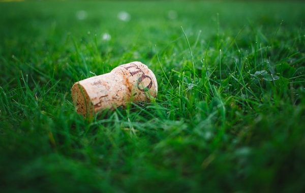 Lush Moves Towards Carbon Positive Packaging – company begins using cork for big changes