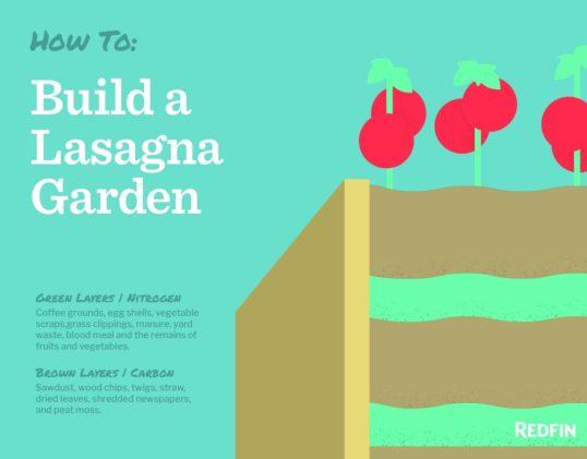 Lasagna gardening layers