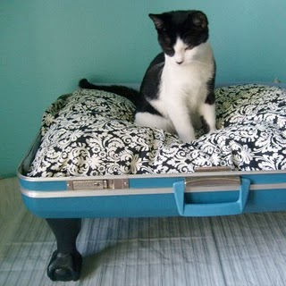 Friday Internet Crushes: Suitcase Pet Beds | Red-Handled Scissors