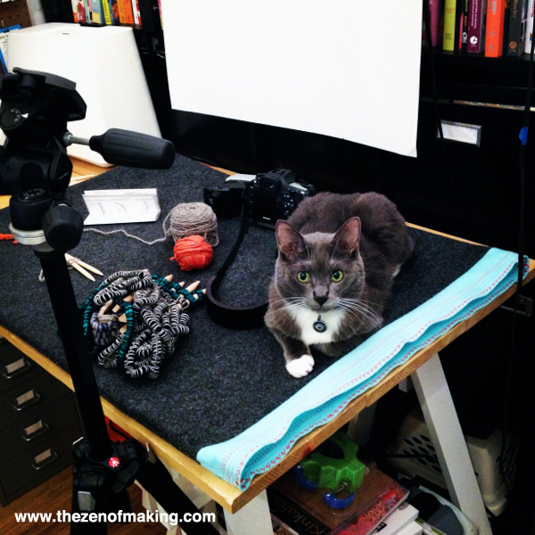 Monday Snapshot: Simon the Cat, Craft Photo Stylist   Red-Handled Scissors