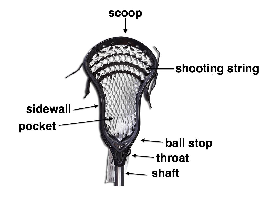 Lacrosse Women S Game Info