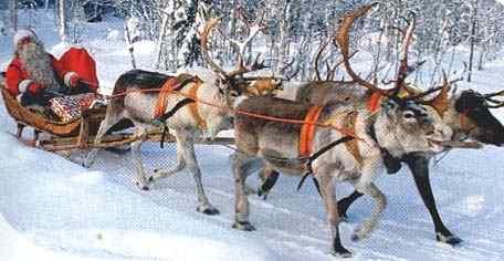 Christmas At Luosto Short Break To Lapland
