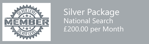 seo cardiff - Silver seo package