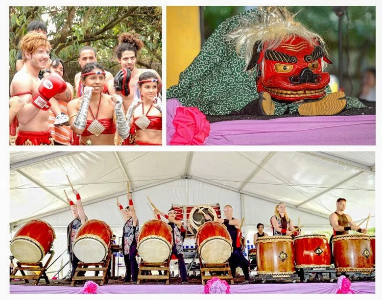 Asian Culture Festival performers