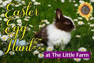 Easter Egg Hunt at the Little Farm