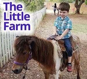 Pony Rides at The Little Farm