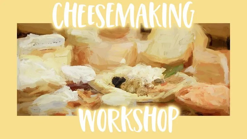 Cheesemaking Workshop at Rancho del Rey