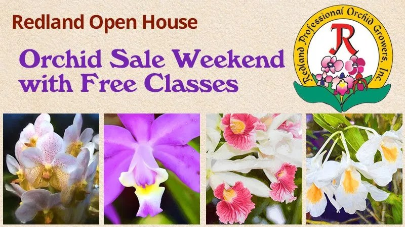 Redland Open House Weekend - Orchid Sales and Free Classes