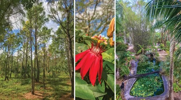Redland Private Garden Tour - Behind The Gates - Exquisite Gardens in the Countryside
