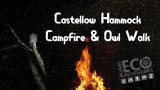 Campfire and Owl Walk at Castellow Hammock