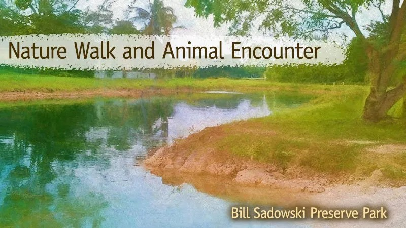 Nature Walk and Animal Encounter at Bill Sadowski Park