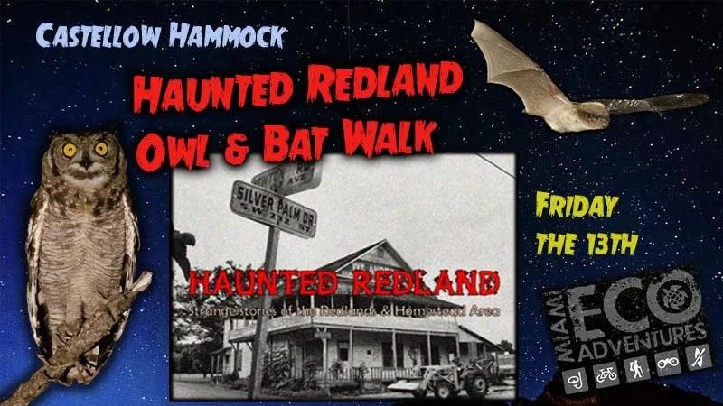 Haunted Redland Owl & Bat Walk - Castellow Hammock Preserve and Nature Center