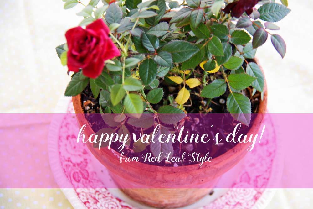 Happy Valentine's Day | redleafstyle.com