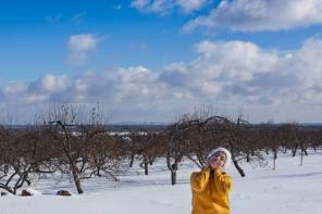 Petite virée hivernale aux Laurentides