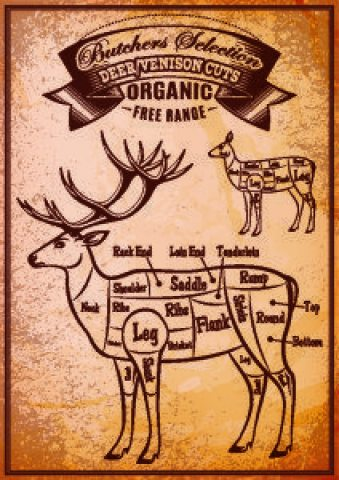 Deer Chart