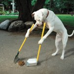 Clean UP you own messes!