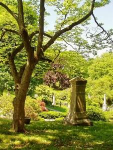 Mr. Auburn Cemetery, Boston, MA.
